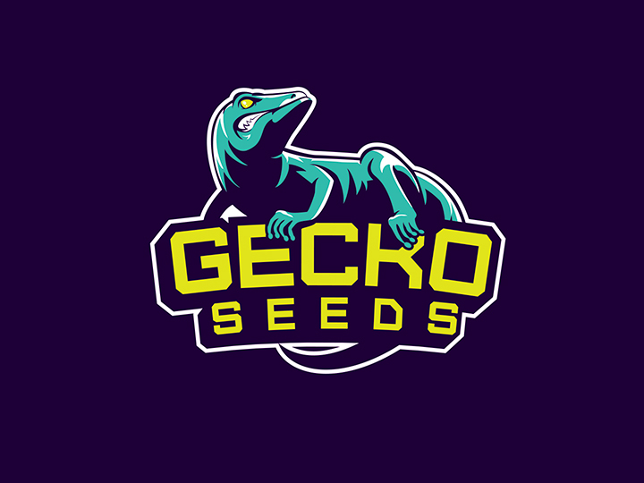 Logo Gecko Seeds